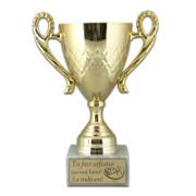 Cupa medie, premii personalizate