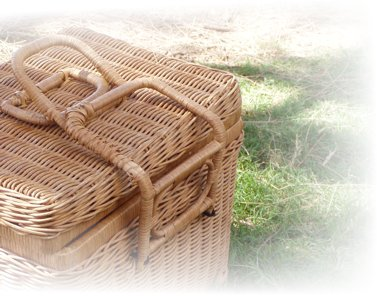 retete pentru un picnic perfect
